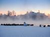 Swan of Tuira (Marko@Oulu) Tags: suomi finland tuira oulu joutsen joki talvi winter höyry pakkanen lintu linnut ranta silhuetti