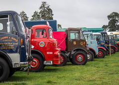 Shrewsbury steam rally 2017 (Ben Matthews1992) Tags: shrewsbury steam rally 2017 august salop shropshire england britain old vintage historic preserved preservation vehicle transport classic commercial lorry truck wagon waggon lorries aec albion leyland