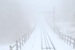 Trust (Challenging Naïve Realism) (K M V) Tags: nothing emptiness white tracks fence sooc trust challengingnaïverealism leere nichts tyhjyys vide winter lhiver talvi vinter snö neige nieve neve lumi lunta raiteet kiskot aita valkoinen vitt blanc