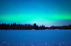 Northern Lights (Hiba Raza) Tags: northernlights blue night sony green stars lights snow