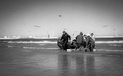 Fishermen morning (magat129245) Tags: leicapolskafilm tanger morocco leica m3 film shootfilm analog blackandwhite sea nature beach work boat fish maroc plage landscape ilford hp5 epsonv600