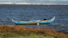 Repouso (Hugo Albuquerque) Tags: barco barcos paisagem rio riotejo