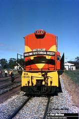 J669 RA1910  new orange yellow (RailWA) Tags: railwa philmelling westrail joemoir ra1910 new orange yellow