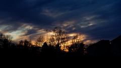 Tonight's Sunset (joeldinda) Tags: mulliken village mullikenmeadows michigan cloud sky sunset tree omd em1ii 4062 march em1 2018 omdem1mkii olympus