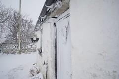 DSC_7999 (seustace2003) Tags: baile átha cliath ireland irlanda ierland irlande dublino dublin éire glencullen gleann cuilinn st patricks day zima winter sneachta sneg snijeg neve neige inverno hiver geimhreadh