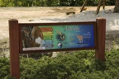 DSC_3518 (ucumari photography) Tags: ucumariphotography zoo miami fl florida march 2018