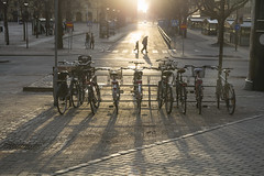 Crossing (A blond-Tess) Tags: 365days 365challenge 365photochallenge dailyphotochallenge dailyphoto streetphotography streets street light backlight shadows bikes city sooc crossing walking karlstad sweden eveninglight 7d canonphotography