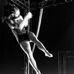 Pole Dancer ¬ 7006 thumbnail