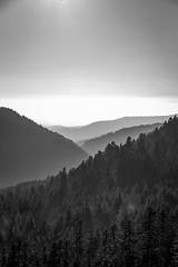 Layers (Christophe Rusak) Tags: montagne paysage ciel brouillard coucherdesoleil nature leverdusoleil brume colline nuage matin bleu forêt soleil vue brumeux val brumeuse arbre crépuscule aube voyage franchecomté