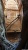 Prasat Daem Chrei Temple, Sambor Prei Kuk (Travolution360) Tags: cambodia sambor prei kuk prasat daem chrei temple ancient ruins sanctuary khmer ways angkor wat kampong thom root tree forest tuktuk history travel