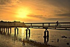 (Roi.C) Tags: sun sunset sunlight sunbeams skyline sky clouds water wave waves beach bridge bicycle bike people peoples riding landscape seascape season outdoor nikon nikkor nikond5300 israel telaviv silhouette reflection serene hdr sea mediterraneansea