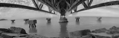Under the Boardwalk (michaelwalker19) Tags: piers blackandwhitecleveland blackandwhite downtownclevelandpanoramic lakeerie edgewaterbeachcleveland perspective
