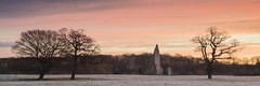 Sunrise at Newark Priory (Michael Sowerby Photography) Tags: newark abbey ripley woking surrey surreyhills morning sunrise frost frosty trees priory ruins building sky cloud dawn panorama canon 5dsr early landscape landscapephotography