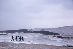 (nolan.photo) Tags: nature snow snowing travel color