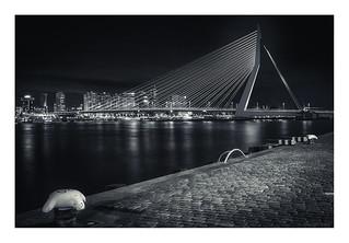 Rotterdam - Erasmusbrug IV
