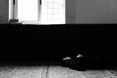 After the prayer (Guido Caltabiano www.guidocaltabiano.com) Tags: prayer pray sleep rest islam quran roma rome blackandwhite canon reportage photojournalism 5dmarkiv 35mm mosque moschea biancoenero