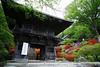 Togakuin temple with azalea (haduki99) Tags: japan kanagawa kawasaki temple azalea