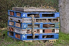 Bug Hotel (brianarchie65) Tags: eastpark eastyorkshire cravenpark hullkingstonrovers colettatyson bughotel lake geese trees water swanboats bridge rugbyground reflections reflectiononwater bluesky unlimitedphotos ukflickr flickrunofficial flickruk flickr flickrcentral ngc lakes canoneos600d geotagged brianarchie65