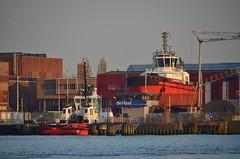 SD Jacoba en RT Revolution (Hugo Sluimer) Tags: portofrotterdam port haven nlrtm zuidholland nederland holland onzehaven
