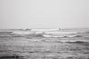 IMG_0181 (will topete) Tags: sandiego sunsetcliffs