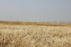 September 2012- Shepherds Flat Wind Energy Project