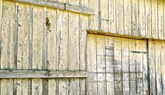 San Gregorio Barn (sswj) Tags: leicadlux4 leica composition barn sangregorio weathered yellow sanmateocounty california northencalifornia oldbuilding woodbuilding historicbuilding scottjohnson availablelight existinglight naturallight architecturaldetail abstraction abstractreality