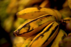 Banana  /  art (Rajavelu1) Tags: banana art macrophotography colours fruits dslr availablelight handheld