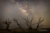Bull Island Boneyard (Dave Miller Photography) Tags: bullisland charleston sunrise skies stars water southcarolina beach milkyway