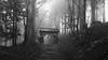 The Gate (Andrew Allan Jpn) Tags: blackandwhite monochrome travel shrine japan mist dark lowkey mountain hiking kyoto arashiyama
