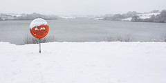 Ice Lolly (Andrew Hocking Photography) Tags: pestfromthewest beastfromtheeast snow argal lake reservoir cornwall mabe falmouth penryn landscape winter lifebouy lifering bouy life ring snowscape
