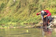 0719 River Hair Washing (Hrvoje Simich - gaZZda) Tags: river hair washing girl outdoors nepal chitwan nikon nikond750 sigma150500563 gazzda hrvojesimich