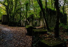 Derelict quarry buildings, Kennal Vale (Rogpow) Tags: cornwall kennalvale ponsanooth quarry cornwallwildlifetrust fujifilm fuji fujixpro2 historicbuilding building abandoned ruin derelict decay disused dilapidated woods woodland industrialhistory industrialarchaeology industrial