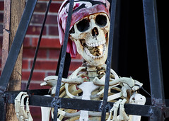 In a Cage (~Arles) Tags: skeleton skull halloween spooky scary cage pirate salem witch october