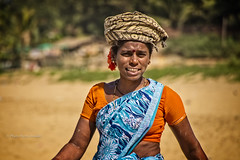 GOKARNA: C'EST ELLE QUI TRANSPORTE LE POISSON. (pierre.arnoldi) Tags: inde india karnataka gokarna pêcheurs pêche portraitdefemme on1photoraw2018 canon6d objectiftamron plage pierrearnoldi photographequébécois photoderue photooriginale photodevoyage photocouleur