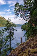 Cameron Lake Valley (MIKOFOX ⌘ Thanks 4 Your Faves!) Tags: canada trees lake xt2 water mountains learnfromexif july moss landscape provia fujifilmxt2 mikofox showyourexif clouds xf18135mmf3556rlmoiswr