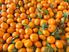Fresh Tangerines (bigbrowneyez) Tags: fruit tangerines orange juicy tasty nature natura macro close delicious shiny beautiful striking bright sunny vitamins delightful sweet dolce leaves edible pretty lovely fancy luscious perfection display freshtangerines