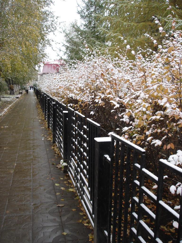фото: Первый снег