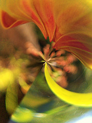 Flower Bud - abstractart (Enio Godoy - www.picturecumlux.com.br) Tags: mobileart flowers abstractart mobilephotography abstract abstraction photomobile cellularphone samsunggalaxys8 mobilephone phone samsungs8 samsung galaxys8 saltosp mobile estersgarden flowerbud celular samsunggalaxy mobgrafia impressionism digital