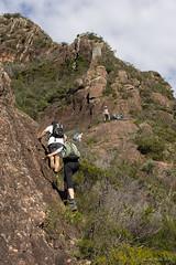 Climbing up Mt Beerwah (NettyA) Tags: 2017 australia glasshousemountains mtbeerwah qld queensland scbwc sunshinecoast bushwalk bushwalking geology rock sandstone seqld bushwalkers