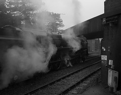 NNR (M&GN) (* Daniel *) Tags: mamiya mamiya7ii markdaniel markdanielphotocom bergger berggerpancro berggerpancro400 berggerpancro400120 berggerpancro400rollfilm pancro pancro400 microphen bw blackwhite blackandwhite mono monochrome monotone film filmgrain grain norfolk northnorfolk northnorfolkrailway train trains railway rangefinder rail steam steamengine filmdev:recipe=11884 ilfordmicrophen developer:brand=ilford developer:name=ilfordmicrophen