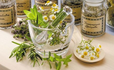 Phytotherapy: How to use plants