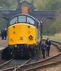 37714 Cardiff Canton (66Alpine) Tags: greatcentralrailway railway engine diesel steam peak 37 cromwell britania loughborough quorn