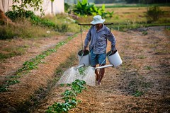 Man watering, Vietnam (water.alternatives) Tags: vietnam