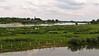 Steenfabriek Blauwe Kamer en pont Wageningen/Opheusen. (Cajaflez) Tags: rivier river fleuve fluss rijn steenfabriek blauwe kamer steenfabriekblauwekamer pontwageningenopheusden cows koeien vaches kuhe