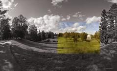 Павловские зарисовки (Tutchka) Tags: вид газон гранж дерево дорожка елка зелень красота лето небо облака павловск панорама парк песок песчанная последнийденьлета прогулка солнце тень трава холм