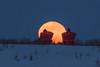 Watching a moon rise, Elk Island NP (WherezJeff) Tags: fullmoon ardrossan alberta canada ca elkisland nationalpark redchairs twilight snow spring giantmoon bluemoon