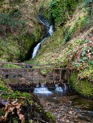 The Secret Waterfall (Richard Tynan) Tags: scotland highlands glengoyne whisky distillery secret waterfall water stream
