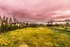 Casot-3 (lelou66) Tags: casot nikon nikon7200 tamron 1024 color fou psy psychédélique etang maison paysage ciel nuage nuages