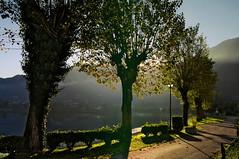 Autunno in Lombardia, Autumn in Lombardy (lucianomandolina) Tags: autumn lombardy herbst lombardei himmel sonne sky sun berge mountains wald grün green italien italia italy alpen forrest idro garda wolken forest clouds