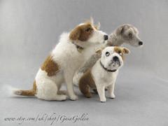 Collection 3 dogs (GaiaGolden) Tags: felted dogs animals needlefelt felt sculpture portrait nature wool handmade doggies sitting mongrels fluffy bulldog english